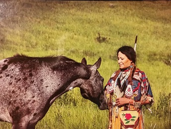 Nez Perce and Appaloosa Notecard